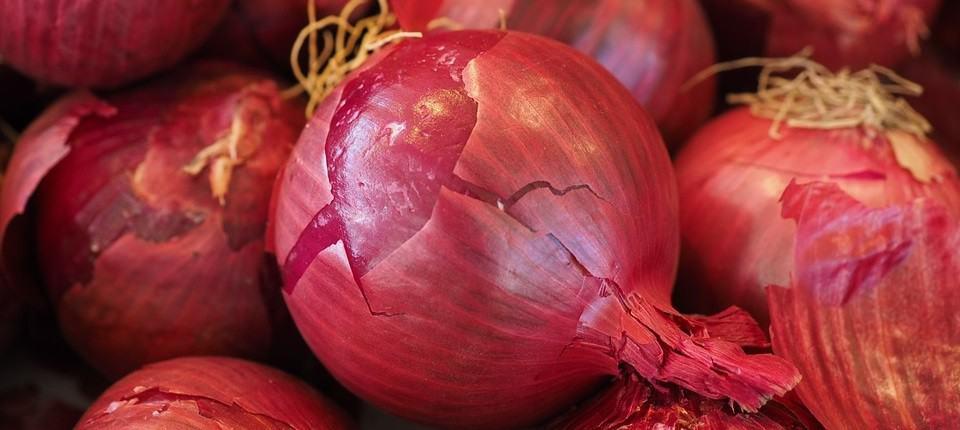 zijn rauwe rode uien gezond