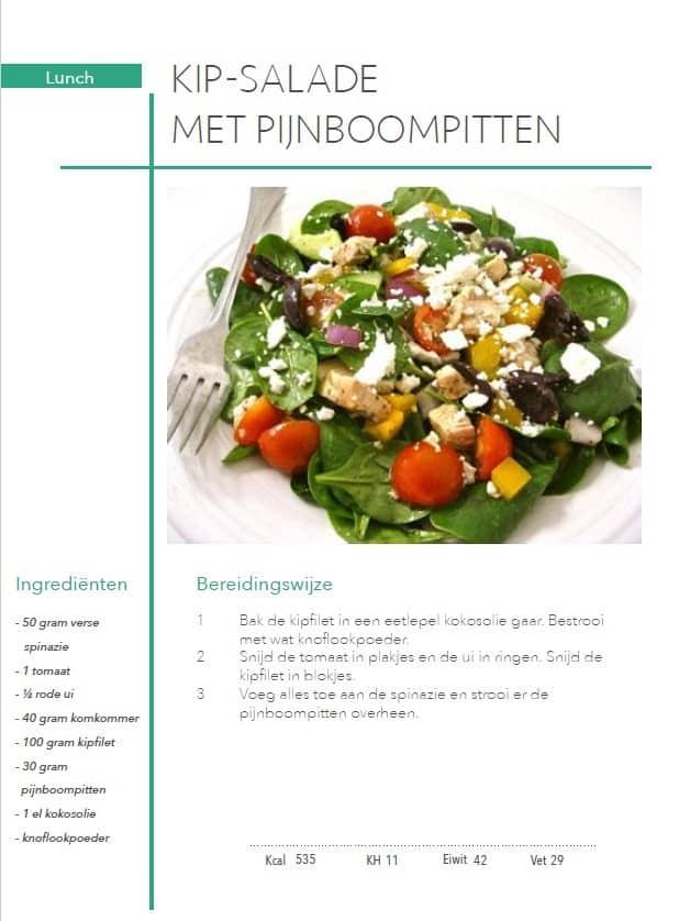 Kip salade met pijnboompitten uit het koolhydraatarme 50 dagen programma PDF
