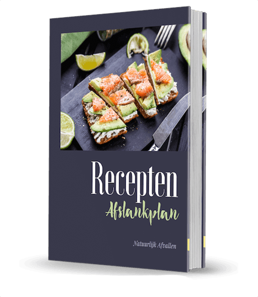 recepten afslankplan boek